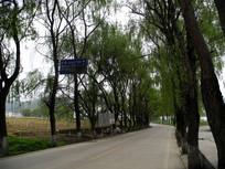 漂亮的农村公路