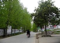 乡村道路上骑摩托车的人