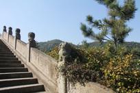 湘湖石桥和上面的石狮子