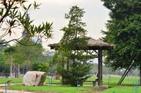 草亭园林建筑风景