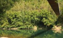 河边风光风景