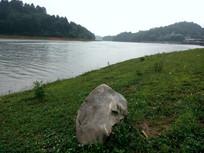 湖边的草地和石头
