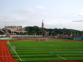 阳光下的足球场