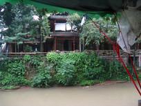 河岸边的灌木与阁楼