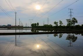 清晨水田中的倒影