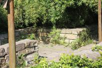 杭州湘湖石墙与树木草丛