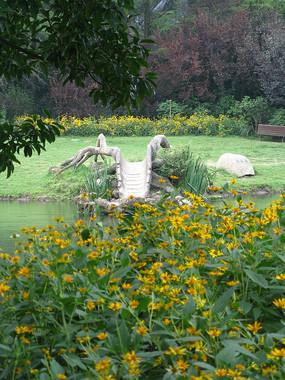 黄色小花与树干造型小桥