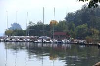 湖边的树木帆船与湖中倒影