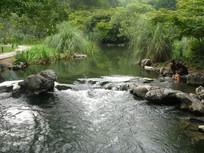 小河里玩水的美女
