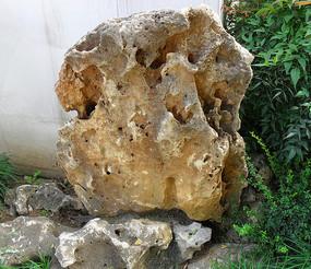 假山石图片素材