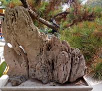 吸水假山石图片素材