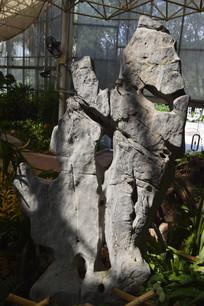 云台花园温室里的假山石