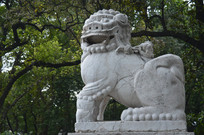 石狮子雕塑高清图片