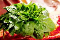 火锅涮品菠菜