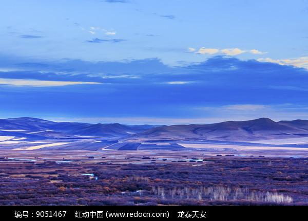 白桦林秋季图片