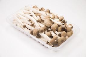 食用蟹味菇