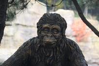 石刻老猴子