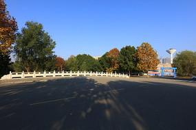 理工大学的秋天校园
