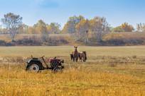 草原上的农田