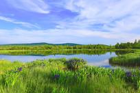 蓝色的森林湖