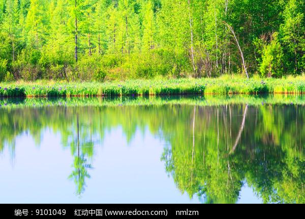 林海中的湖泊图片
