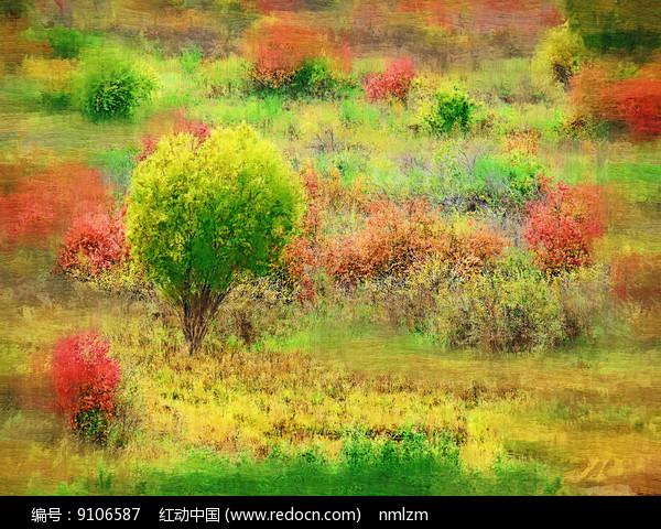 电脑画《彩色丛林》图片