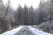 森林冰雪公路