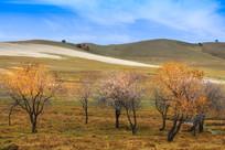 秋季草原风光