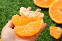 橙子果肉特写