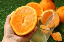 丑橘挤出水