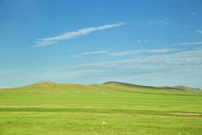 翠绿草原美景