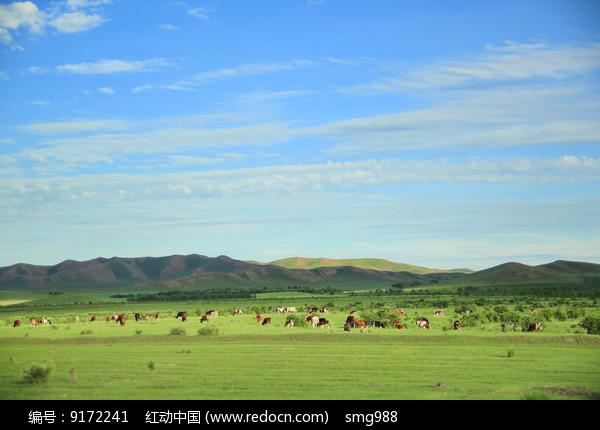 蓝天白云牛羊成群的草原美景图片