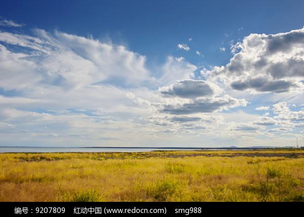 正午阳光蓝天白云达里湖草原图片