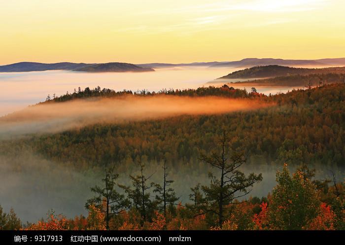 大兴安岭秋季森林图片