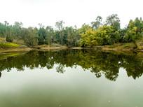 乡村田野湖泊树林竹林倒影