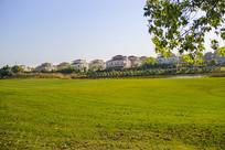 绿地水岸别墅