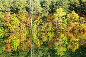 秋季湖泊彩林