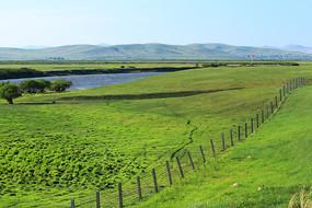 中俄边境牧场草地铁丝网