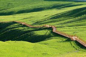 草原旅游区的木栈道