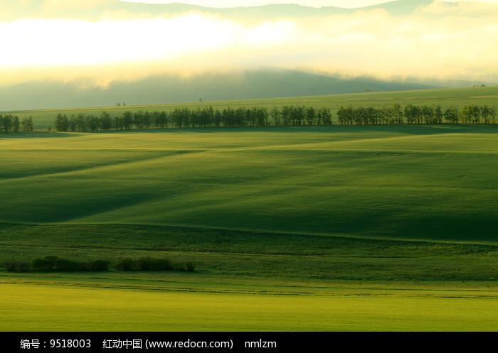 绿色农田晨雾缥缈图片
