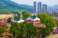 龙王塘樱花园建筑群与树林俯视