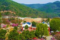 龙王塘樱花园建筑与树林俯视图