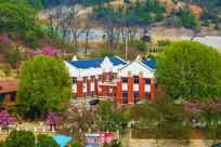 龙王塘樱花园建筑与树木俯瞰