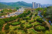 龙王塘樱花园与高层建筑俯视图