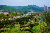 龙王塘樱花园与山峰俯视图