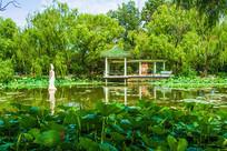 北陵公园东荷花湖凉亭与雕像