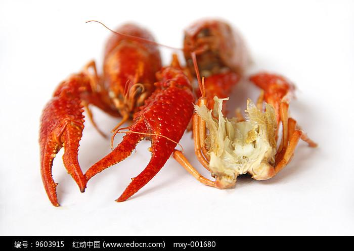 麻辣龙虾肉图片