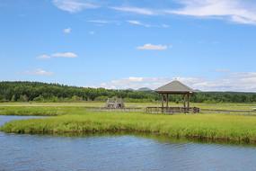 湿地公园上的木屋