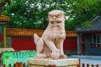 沈阳清福陵正红门公石狮斜侧