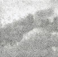 灰白色皮革斑点图